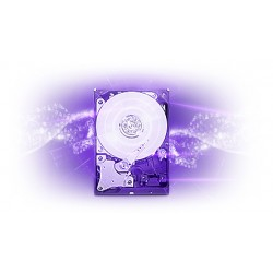 Disque dur 4To WD® Purple